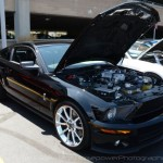 2013 Woodward Dream Cruise: Shelby Mustangs