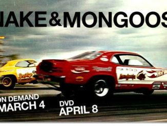 Snake and Mongoose Featured
