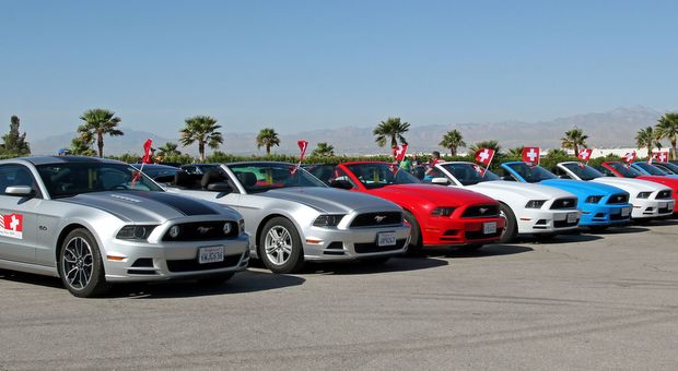 Mustang 50th Anniversary Las Vegas