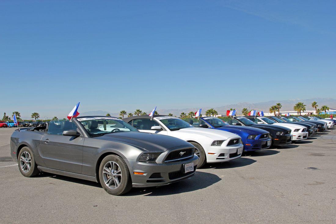 Mustang 50th Anniversary Las Vegas-012