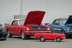 Mustang 50th Anniversary Las Vegas-069