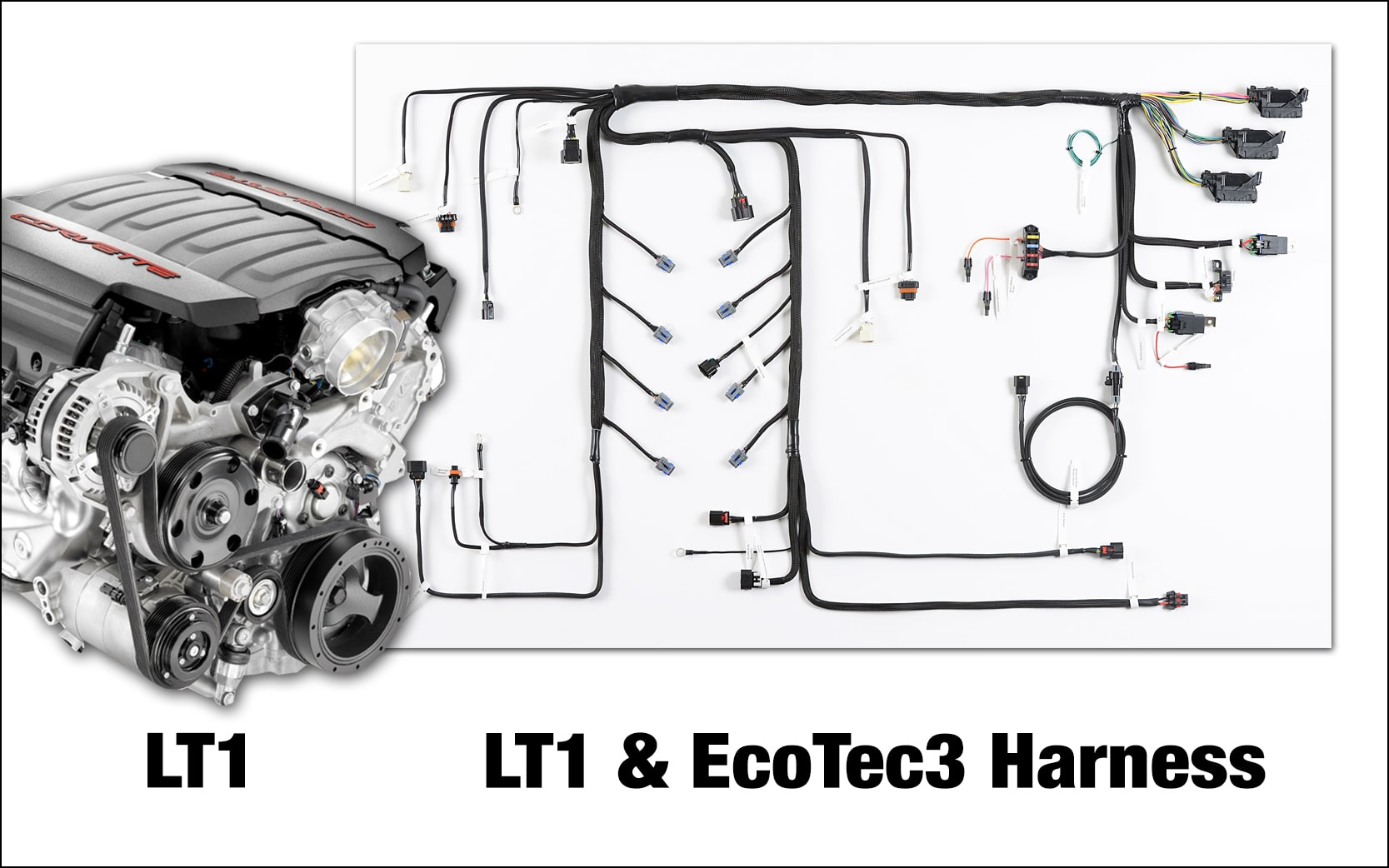 Howell LT/EcoTec3 Conversion Harnesses