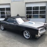 5 Questions with Jesse Barratt of Blue Sky Performance and Restoration