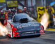 Tommy Johnson JR Wheeling MD Anderson Funny Car for 2020