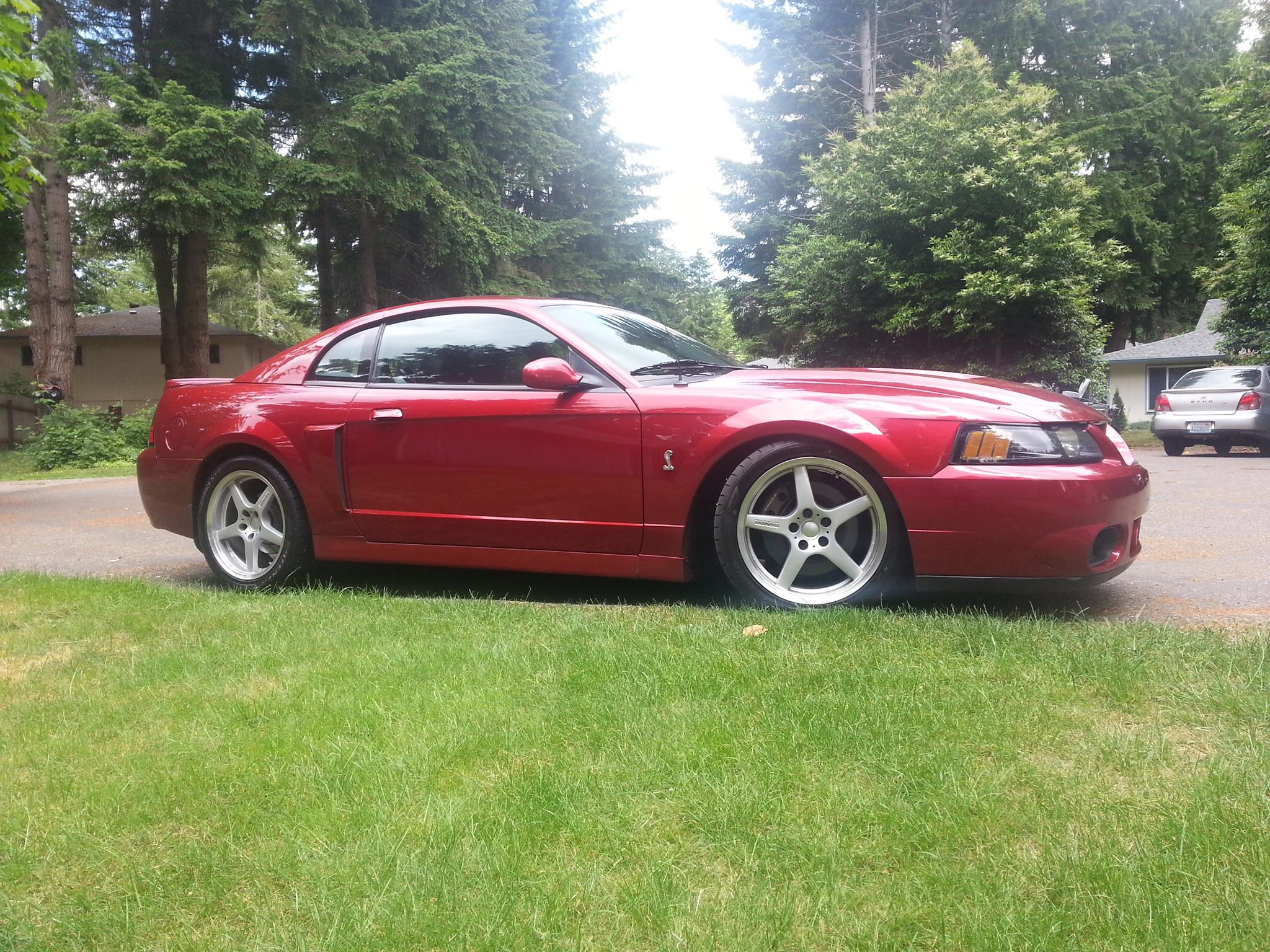 Jim Cassidy - Lacey, WA - 2003 Mustang Cobra