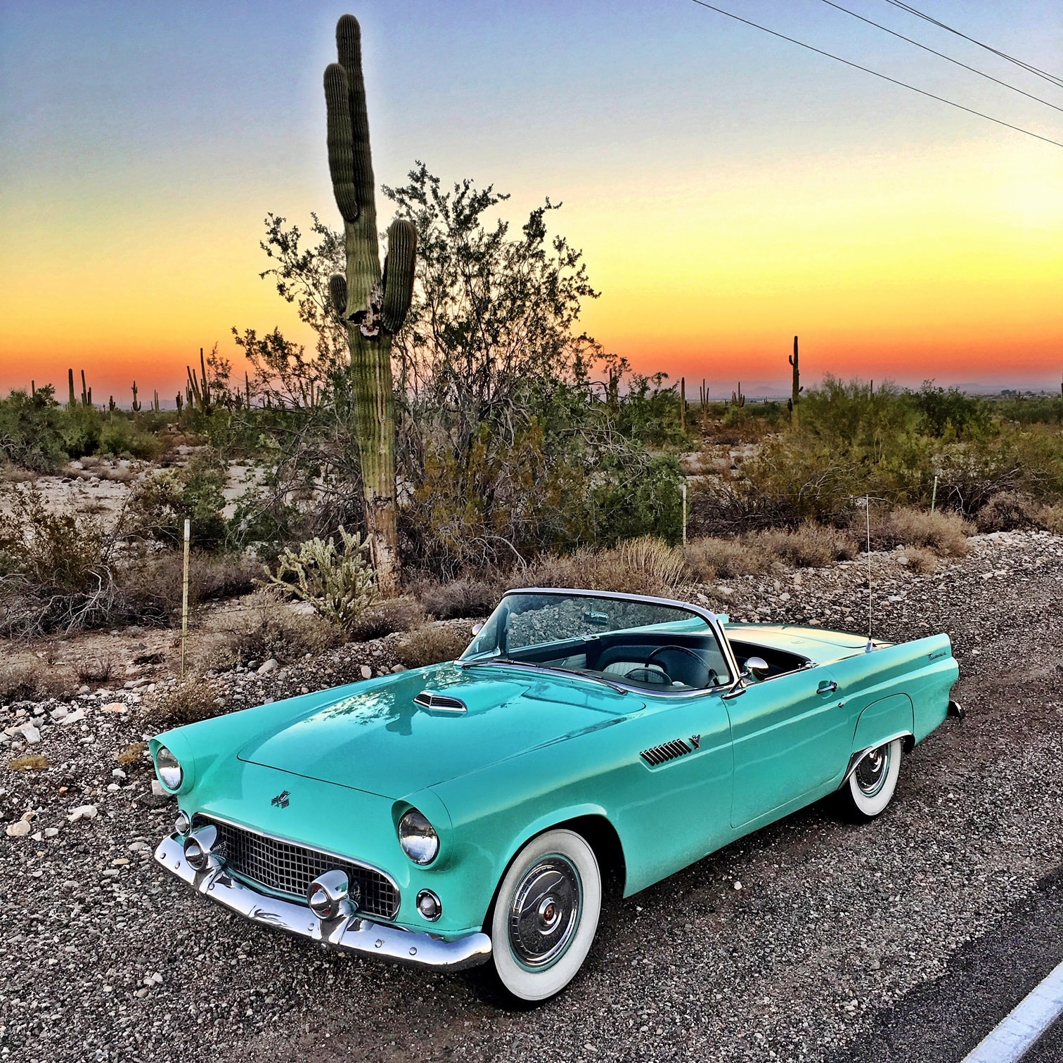 3rd Place -  Janine Badoino - Surprise, AZ - 1955 Ford Thunderbird