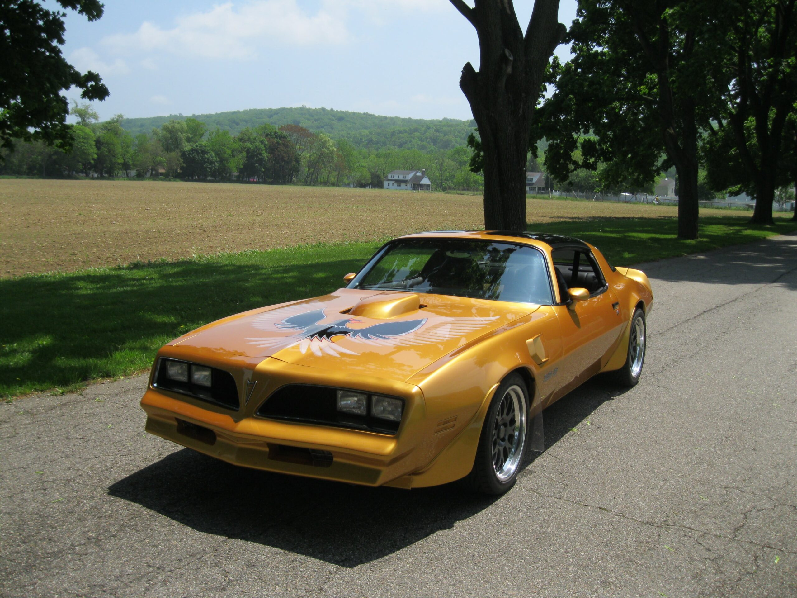 2nd Gen Engineering 1978 Pontiac Trans Am