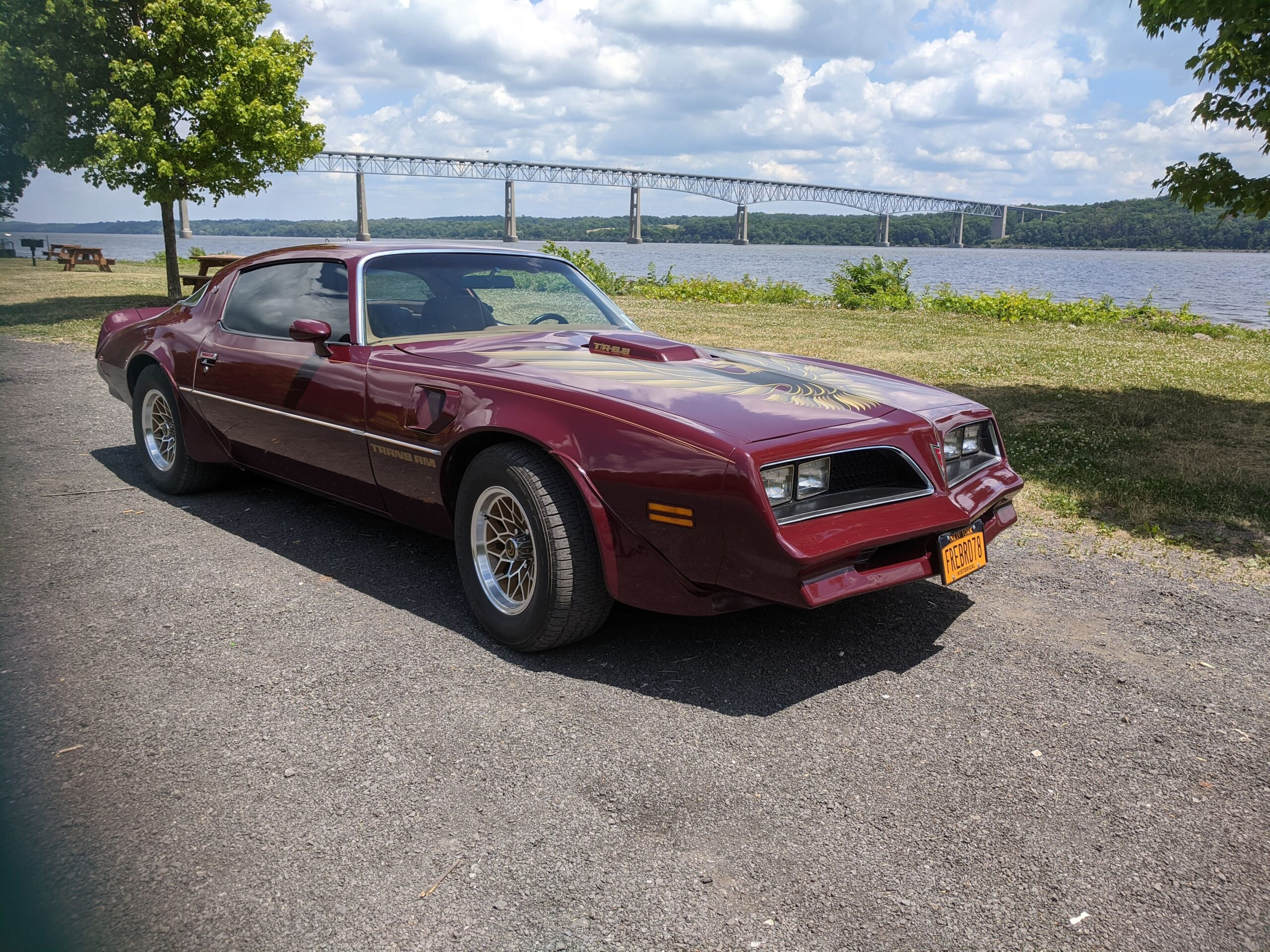 Nancy Fallon, Arkville, NY-1978 Pontiac Trans Am